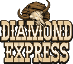 Diamond Express logo